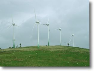 environment windfarm